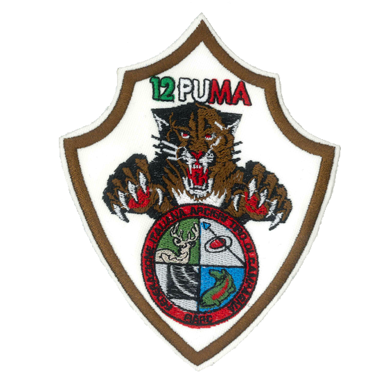 patch ricamata puma